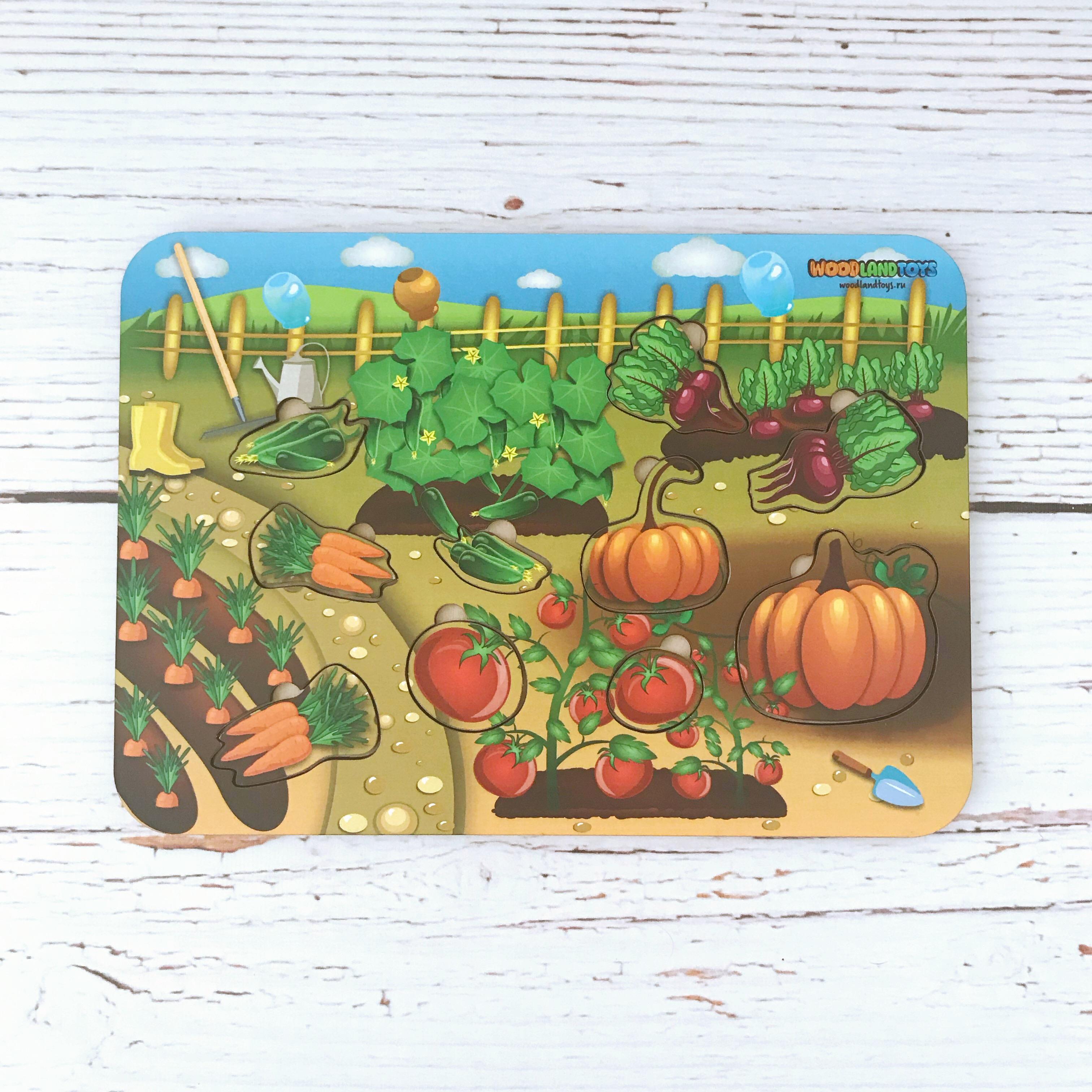 Купить WOODLAND Деревянный вкладыш Овощи , 011601, Россия